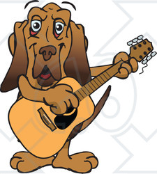 Clipart of a Happy Bloodhound Dog Playing an Acoustic Guitar - Royalty Free Vector Illustration