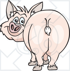 Clipart of a Cartoon Happy Pink Pig Looking Back, with His Butt in Front View - Royalty Free Vector Illustration