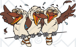 Clipart Illustration of Three Kookaburra Birds Laughing On A Wire