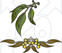 Royalty-Free (RF) Clipart Illustration of Leaves And Flowers Of Gum Wattle